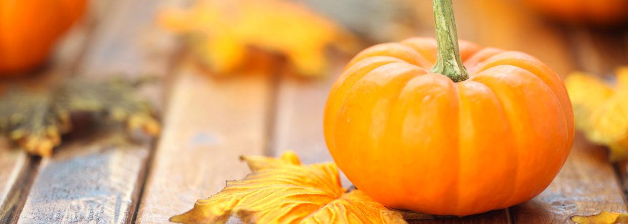 Ottobre: il mese della zucca