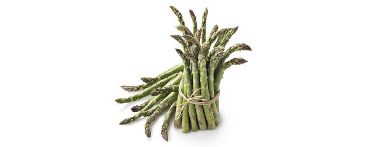 La coltivazione degli asparagi