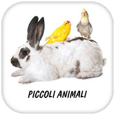 PICCOLI ANIMALI